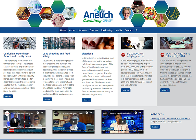 Anelich Consulting website