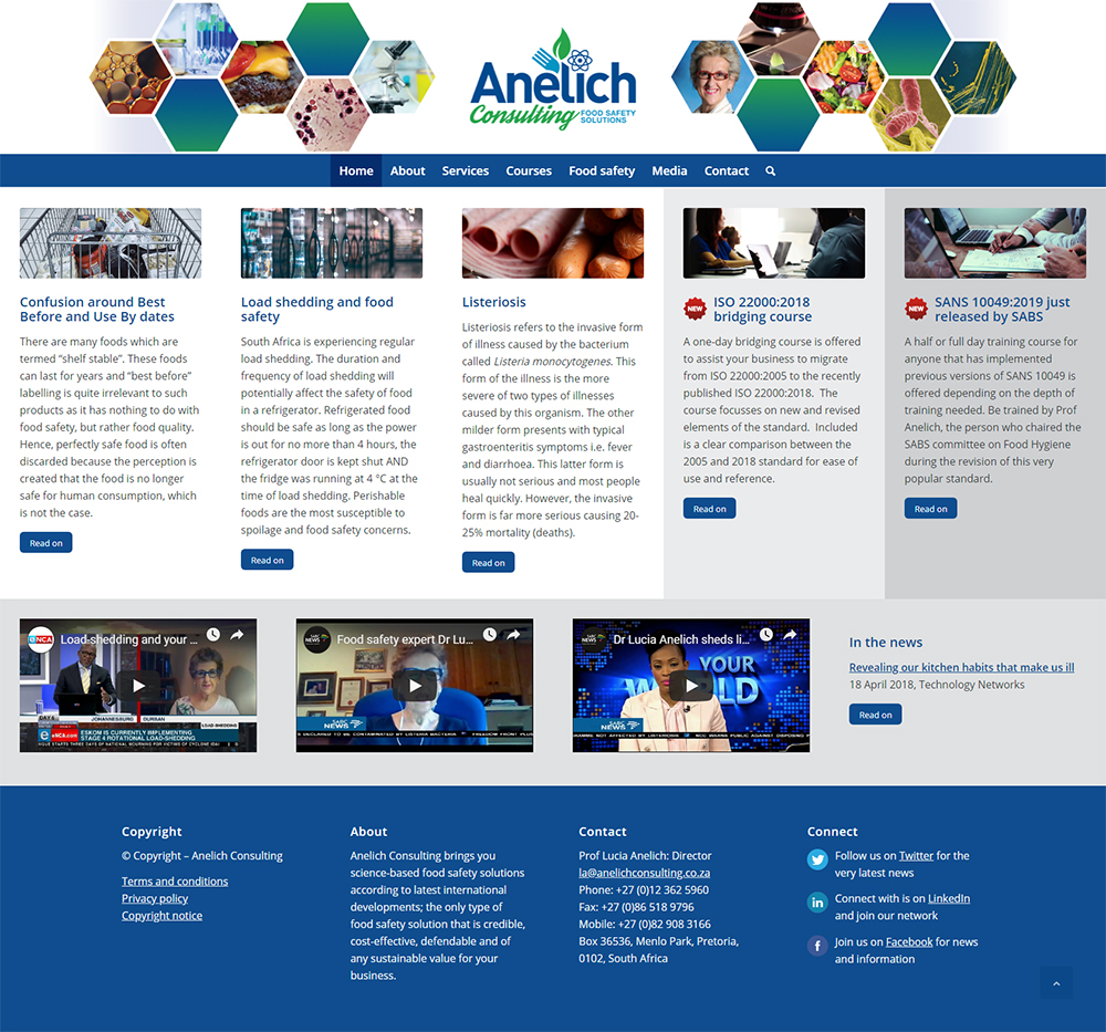 Anelich Consulting website home page
