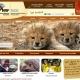 National Zoological Gardens website