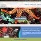 SAEON eNews website